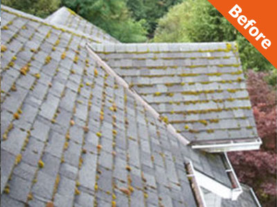 Domestic Roof Cleaning Devon Surface Care